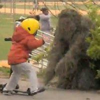 Pegadinha: Novos Sustos com o Homem Arbusto