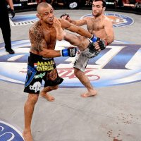 Top 10 Nocautes do Bellator MMA