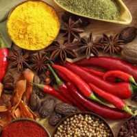 Os Alimentos Termogênicos que Ajudam a Emagrecer